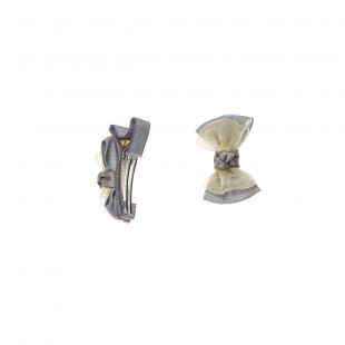 Hair clip 2 items